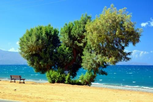 blog_crete_0