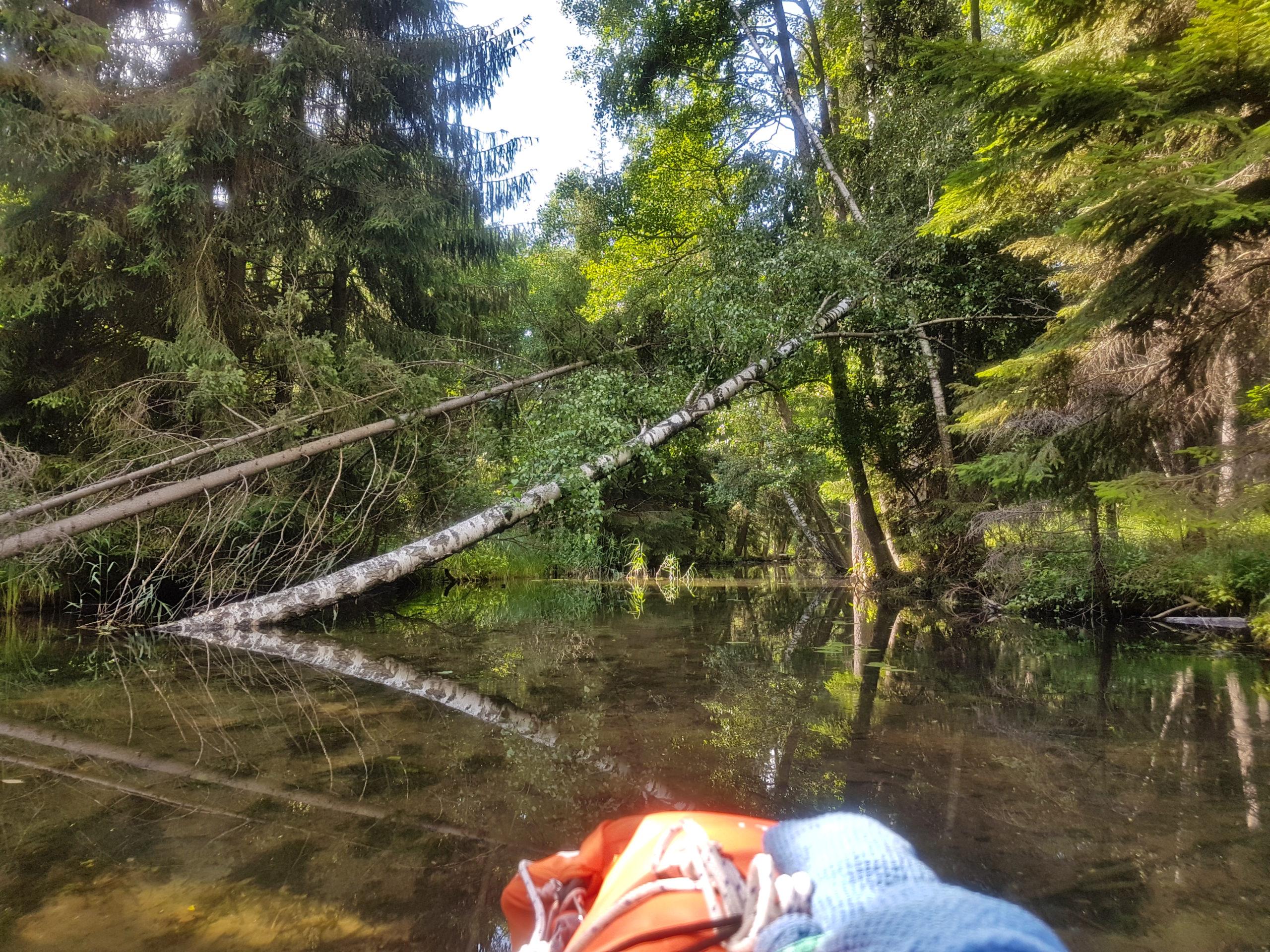 Przesmyk Suchą Rzeczką do Jeziora Serwy